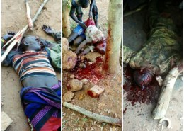 A mob has killed Ekasikout Apanaluk together with his son and an LDU